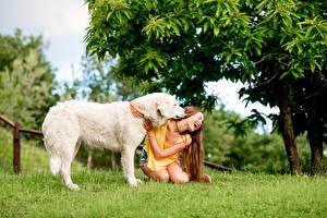 Hintergrundbilder Hunde Braunhaarige Fröhlicher Retriever Mädchens