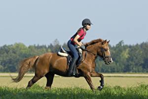Wallpapers Equestrian sport  Horses Run Uniform athletic Girls
