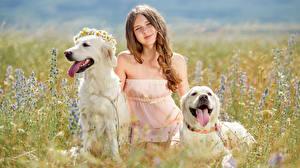 Bilder Felder Hunde Kleine Mädchen Blick 2 Retriever Zunge Kinder Tiere