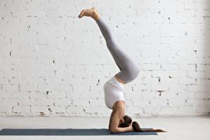 Fonds d'écran Fitness Gymnastique Mur Entraînement Jambe Aux cheveux bruns Filles Sport