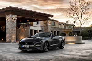 Tapety na pulpit Ford Kabriolet Szary 2018 Mustang GT 5.0 Convertible samochód