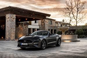 Фотографии Ford Кабриолет Серый 2018 Mustang GT 5.0 Convertible авто