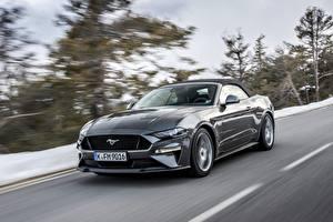 Bilder Ford Grau Fährt 2018 Mustang GT 5.0 Convertible auto
