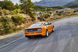 Fotos Ford Bewegung Hinten Orange 2018 Mustang GT 5.0 Autos