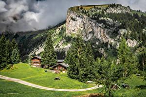 Bilder Frankreich Gebirge Gebäude Grünland Landschaftsfotografie Fichten Allamont