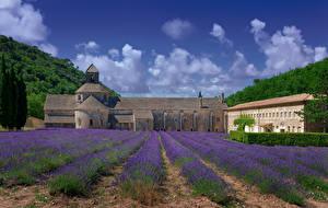 Bakgrunnsbilder Frankrike Tempel Kloster Åker Lavendelslekta Senanque Abbey byen Natur