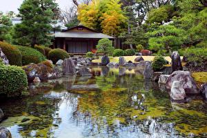 壁纸、、日本、庭園、池、石、低木、トウヒ属、自然