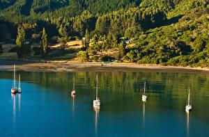 Hintergrundbilder Neuseeland Küste Flusse Wälder Schiffe Segeln Picton Natur