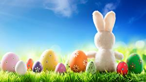 Обои Кролики Пасха Яйца Траве