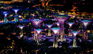 Photo Singapore Gardens Night Design Gardens by the Bay Cities