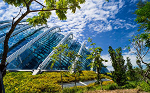Wallpaper Singapore Gardens Houses Design Trees Gardens by the Bay Nature