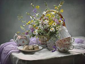 Hintergrundbilder Stillleben Kamillen Süßware Tisch Weidenkorb Tasse Blumen