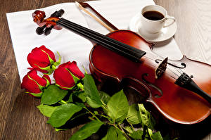 Wallpaper Still-life Coffee Violin Roses Cup Red Flowers
