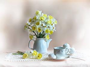 Hintergrundbilder Stillleben Narzissen Zefir Flötenkessel Tasse Blumen