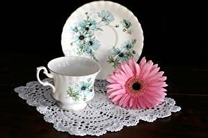 Bilder Stillleben Gerbera Schwarzer Hintergrund Tasse Teller Rosa Farbe Blumen