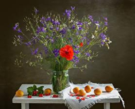 Bilder Stillleben Mohn Marille Johannisbeeren Tisch Glocke Einweckglas Blumen Lebensmittel
