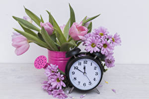 Picture Tulips Chrysanthemums Clock Alarm clock Pink color flower