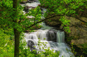 Bilder USA Park Wasserfall Ast Great Smoky Mountains National Park Natur