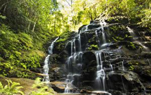Bilder Australien Wasserfall Felsen Laubmoose Wentworth Falls Natur
