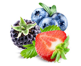 Fotos Heidelbeeren Erdbeeren Brombeeren Großansicht Weißer hintergrund das Essen