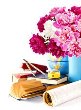 Fotos Sträuße Pfingstrosen Weißer hintergrund Buch Blüte