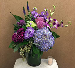 Bilder Sträuße Rosen Hortensien Levkojen Orchideen Nelken