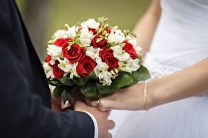 Photo Bouquets Rose Wedding Hands flower