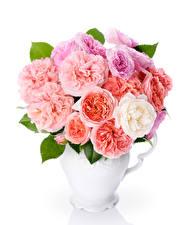 Hintergrundbilder Sträuße Rosen Weißer hintergrund Vase Blumen