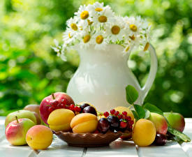 Wallpapers Camomiles Fruit Apricot Apples Cherry Currant Vase