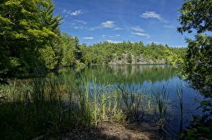 Fotos Kanada Park See Pink Lake Gatienau Park Natur
