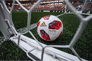 Fotos Fußball Ball Rasen Russia FIFA World Cup 2018, Adidas Telstar 18 sportliches