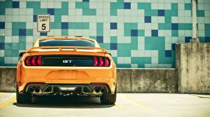 Fotos Ford Hinten Gelb Mustang GT 2018 Fastback Sports Autos