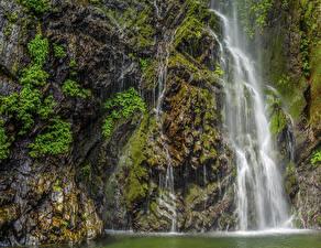 デスクトップの壁紙、、日本、京都市、滝、岩、コケ、自然