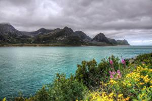 Fotos Norwegen Flusse Gebirge HDRI Strauch Husoy