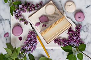 Hintergrundbilder Stillleben Syringa Ast Bücher Macaron Blumen