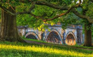 Fotos Vereinigtes Königreich Brücken Skulpturen Ast Gras Chatsworth Natur