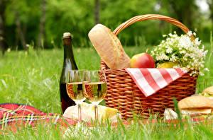 Fotos Wein Brot Picknick Weidenkorb Weinglas Flasche