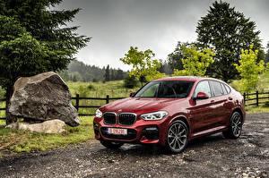 Fotos BMW Regen Bordeauxrot Metallisch 2018 X4 xDrive25d M Sport Worldwide Autos