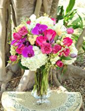 Bilder Sträuße Rosen Orchideen Nelken Hortensien Vase