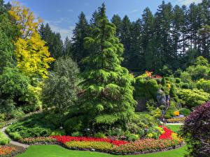 Photo Canada Gardens Design Spruce Trees Butchart Gardens British Columbia Nature