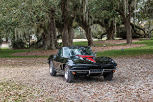 Bilder Chevrolet Antik Metallisch Schwarz 1967 Corvette Sting Ray L68 427-400 HP Autos