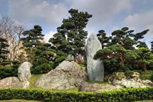 Fotos China Hongkong Parks Steine Bäume Nan Lian Garden Natur