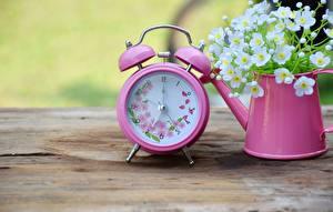 Fotos Uhr Wecker Rosa Farbe