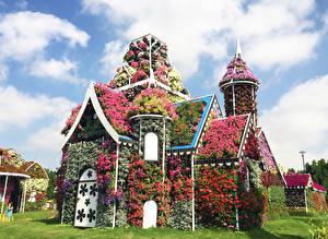 Pictures Dubai Gardens Houses Petunia Design Miracle Garden Nature