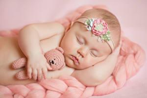 Fotos Knuddelbär Säugling Schläft Kinder