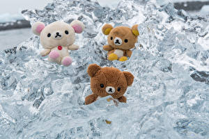 Desktop wallpapers Teddy bear Three 3 Ice