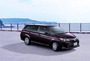 桌面壁纸,,丰田汽车,雪青色,混合動力車輛,2017-18 Corolla Fielder Hybrid,汽车
