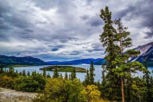 Hintergrundbilder Alaska See Insel Bäume Tutshi Lake Natur