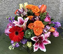 Hintergrundbilder Blumensträuße Lilien Rosen Gerbera Tulpen Blumen