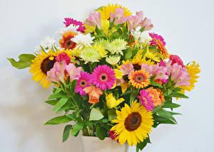 Hintergrundbilder Sträuße Rosen Gerbera Inkalilien Sonnenblumen